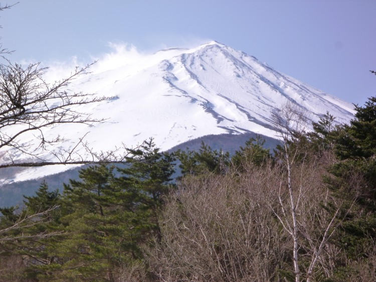 日本旅游签证所需材料 日本签证大概多久能出Y