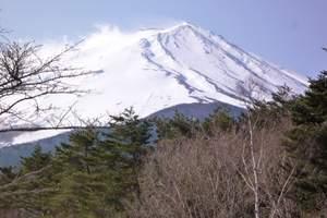 济南到日本旅游【山航直飞 高端住宿】三飞六日全景游 顶奢和风