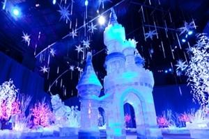 郑州冰雪城堡门票预订-郑州冰雪城堡门票团购