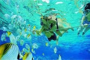 长春到普吉岛旅游 普吉岛PADI潜水证OW&AOW考试6日游