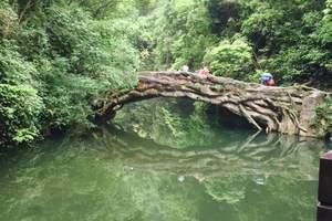 泰安到三峡大坝、两坝一峡游船、三峡大瀑布纯玩四日游