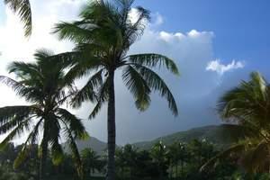 【纯净海洋】海南海口、呀诺达雨林、三亚西岛、兴隆植物园6日游