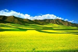 北京出发到西宁青海湖+茶卡盐湖塔尔寺+金银滩大草原双卧6天
