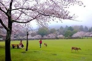 [心动日本九月】长春起止去日本<心动日本名东七日游>