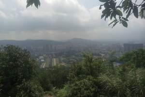 广州一天旅游景点推荐|广州白云山、越秀公园、黄埔军校一天游