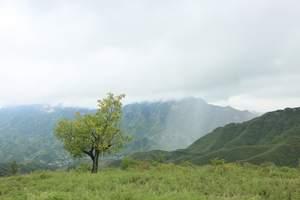 到房山旅游线路报价_野三坡白草畔红色休闲一日游_青旅周边游