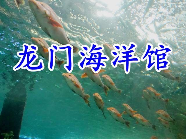 龙门海洋馆宣传图楷体