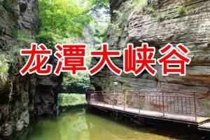 洛阳到龙门石窟+少林寺+龙潭大峡谷三日游  散客天天发 含酒