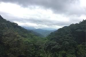 广州到惠州龙门南昆山养生谷温泉别墅直通车二天旅游