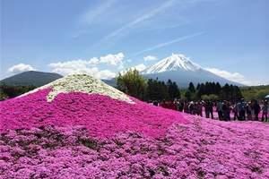 日本旅游、日本旅游攻略、从深圳出发去日本本州特价六天游