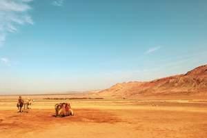 吉林到沙漠草原旅游团【一半火焰一半绿洲汽车2日】纯玩二日游