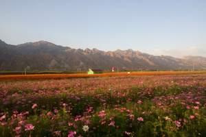 【京郊周边旅游】顺义汉石桥湿地踏青、七彩蝶园巴士一日游