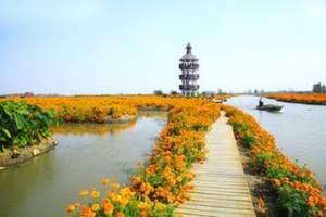 青岛到泰州兴化五彩垛田、李中森林公园、溱湖湿地大巴深度三日游