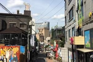 淄博到韩国旅游 淄博去韩国自由行 淄博去韩国自由行双飞四天游