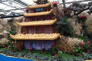 泰安周末旅游去哪里好|泰安到枣庄古城上九山大巴2天多少钱