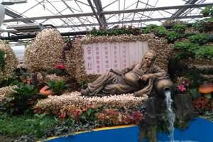 泰安宁阳肥城新泰东平出发到乌鲁木齐吐鲁番天池双飞八日游