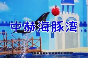 洛阳中赫海豚湾海洋公园门票预订 中赫海豚湾海豚表演
