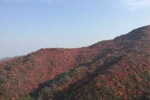 洛阳到巩义长寿山红叶一日游