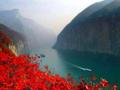 【夕阳红】常熟太仓张家港到武汉宜昌三峡邮轮重庆8日游纯玩哦