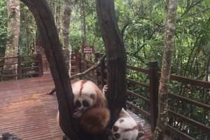 哈尔滨动物园一日游-北方深林动物园门票价-动物园孩子票多少钱
