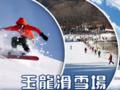天津到蓟州玉龙滑雪场旅游团-蓟县玉龙滑雪试滑直通车休闲一日游