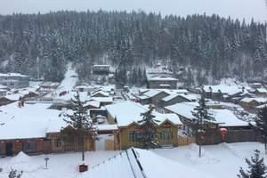 冬季冰雪大世界.5S雪域麦加.十里冰雪画廊.大雪谷双飞五日游