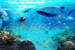 珠海长隆海洋王国一天游