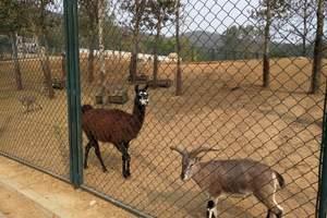北方森林动物园一日游_哈尔滨动物园在哪里_阿城动物园门票价格