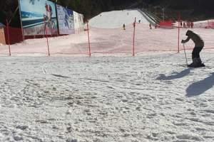 白清寨一日游 沈阳周边哪个雪场适合初学者和练习者的滑雪场推荐