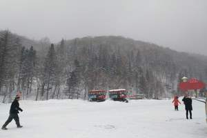 东北旅游哈尔滨亚布力雪乡激情滑雪汽车三日游