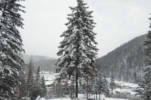 哈尔滨、中国雪乡、漠河、北极村找北7日游