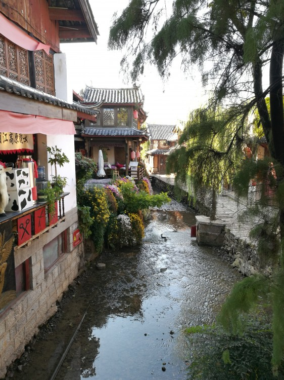 云南有哪些攻略一定要去-云南旅游景点介绍-哈西安春节一日游景点图片