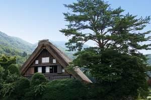 日本将全面解禁民宿 明年6月开始实施