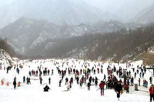 代售南阳老界岭滑雪优惠门票_自驾车滑雪电子票