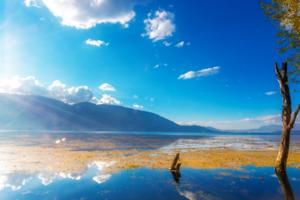 今年云南旅游总收入预计6700亿 九举措力推旅游强省