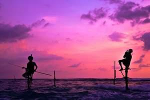沈阳出发到斯里兰卡4飞9日游 斯里兰卡9日蜜月游团期线路报价