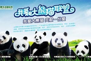 春节亲子游线路推荐,青岛出发到广州长隆、珠海长隆双飞5日游