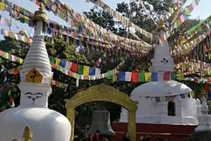 长春到尼泊尔旅游—众神的国度 尼泊尔全景之旅9晚10日
