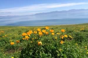 沾花惹草: 赛湖、昭苏、夏特、喀拉峻、那拉提、天鹅湖深度7日