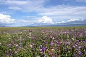 越野拍摄--草原风光摄影深度9日游