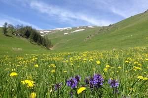 猎色伊犁:深山秘境顶级美色10日游