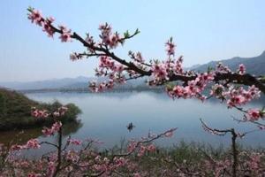 长春出发  丹东鸭绿江游船、凤凰山、东汤天沐温泉纯玩2日游