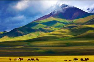 今年进疆旅游专列将突破200列 游客人数将突破15万人次