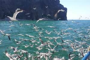 周末青岛到长岛跟团游:魅力长岛、万鸟岛探秘二日游(纯玩团)
