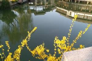 泰安过年旅游到南京 夫子庙 南京新街口美食 博物院大巴三天