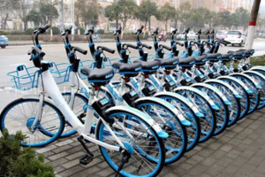 二三线城市的胜利,哈罗单车获7亿美金融资