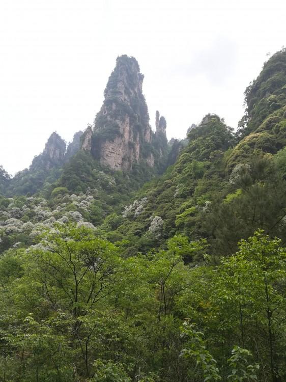 张家界国家森林公园游览线路(精华景点)