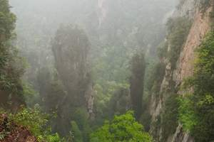 张家界国家森林公园二日游 张家界2日跟团游 张家界旅游线路