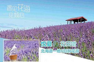 暑假日本亲子旅游线路推荐,青岛到日本北海道跟团精品6日游