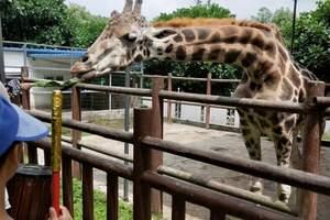 周末旅游:萬家惠歡樂水世界/鄂爾多斯野生動物園汽車二日游